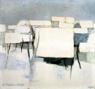 Les maisons sous la neige.Roger Mühl